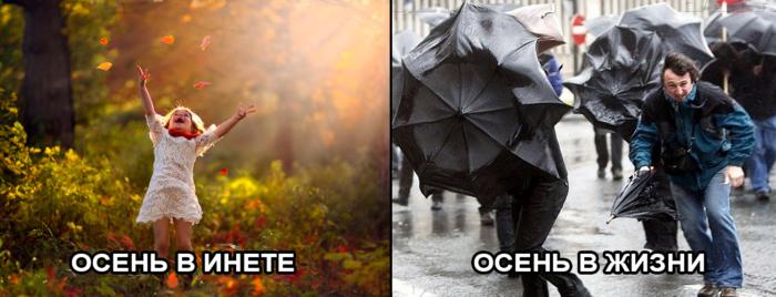 Осень в инете и в жизни (ожидания vs реальность)